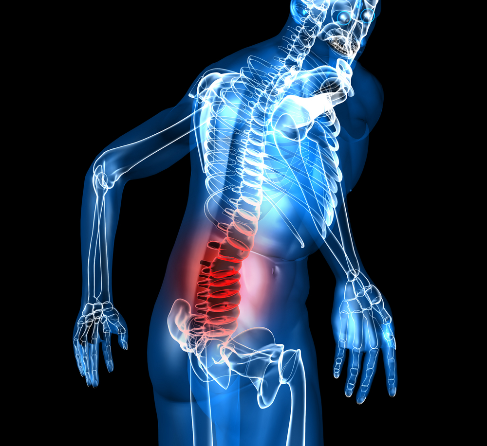 low back pain causes image presenting low back pain fragment